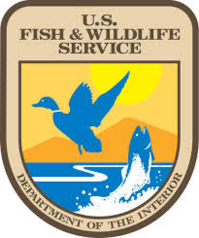 Fish plus Wildlife Service founded