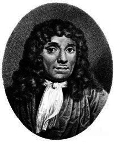 Anton Van Leeuwenhoek