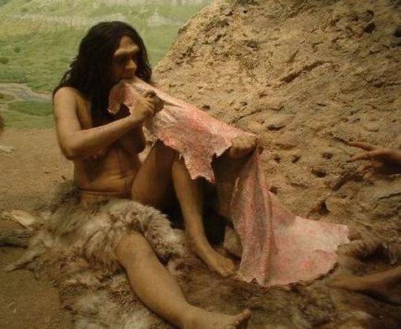Trabajo de la piel 500 a.C