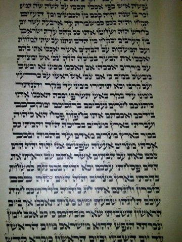 Torah Scribe Apprentice