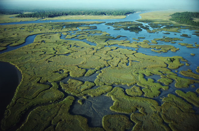 Everglades National Park Established