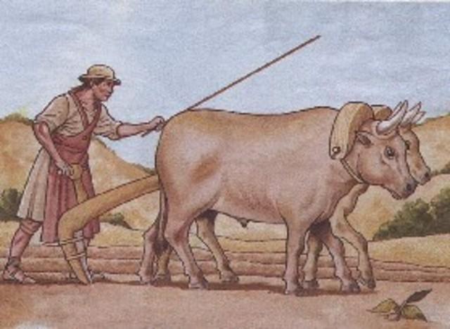 Era Agrícola y Civilización