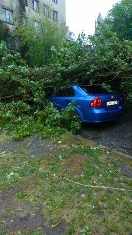.Из-за ураганного ветра, достигающего 30 м/с , с порывами до 33 м/с, повалены сотни деревья, во многих микрорайонах оборваны линии электропередач.