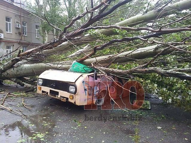 Власти Бердянска не в силах устранить последствия стихии даже под окнами горисполкома
