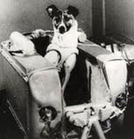 Sputnik 2-First Animal in Space