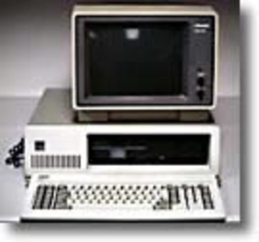 IBM computer and microsoft software