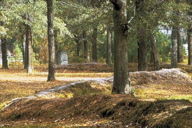 Battle of Moore's Creek