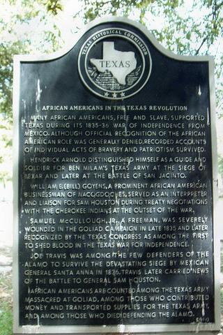 the Goliad campain