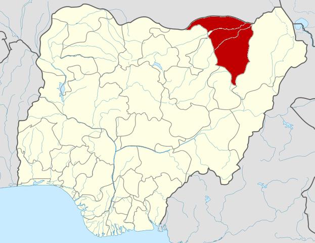 Coordinated attacks on Damaturu, Yobe State capital