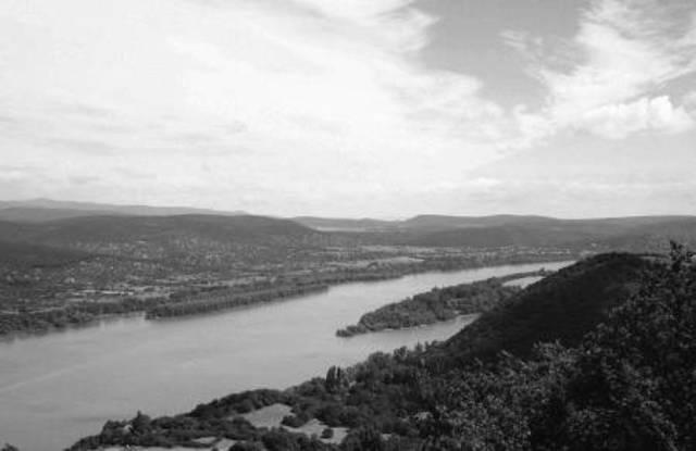 Готы под командованием Фритигерна и Алавива переправились через Дунай