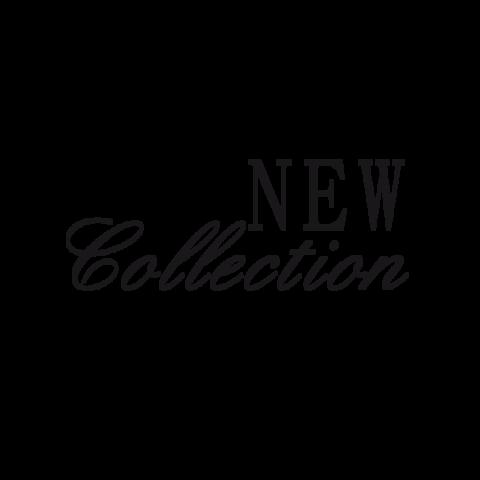 La collection Titanium