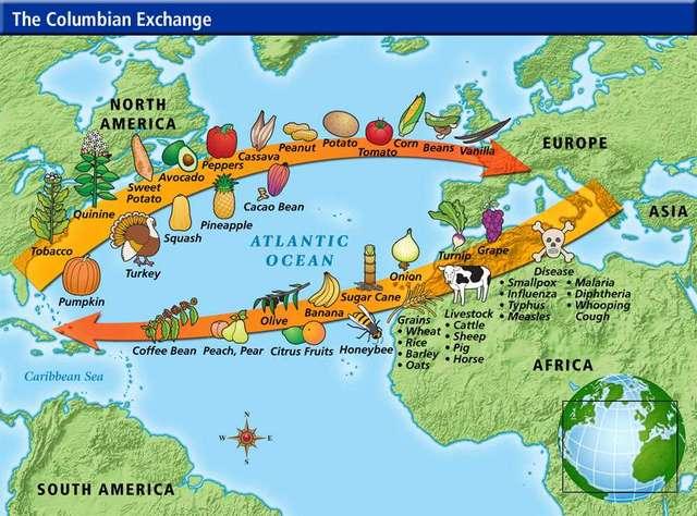 Columbian Exchange Begins