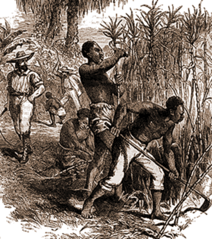 First African slaves brought to the New World