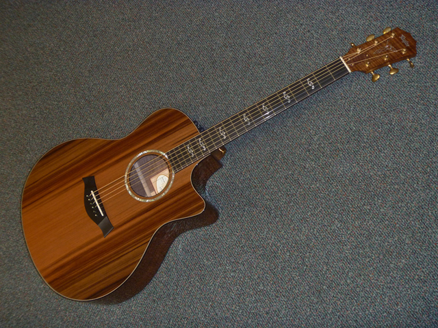 Bought Taylor Custom GS / Traded in Taylor NS24ce