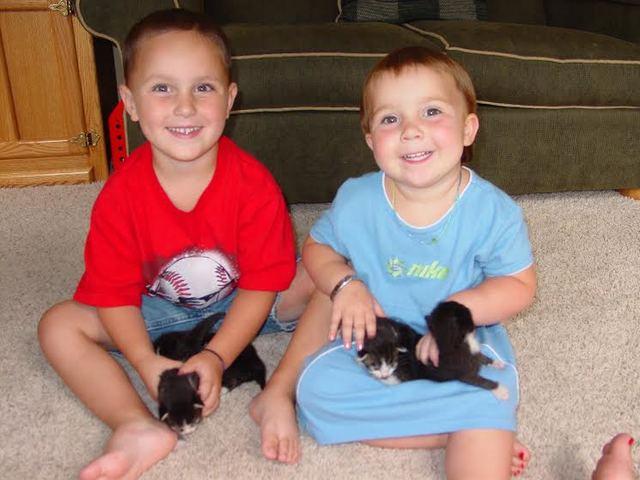 Got kittens