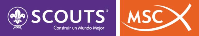 Creación de MSC (Movimiento scout catolico)