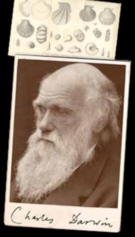 Darwin Dies...