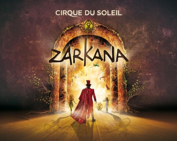 Участие в шоу Цирка дю Солей