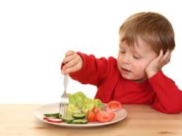 alimentación de 1-3 años
