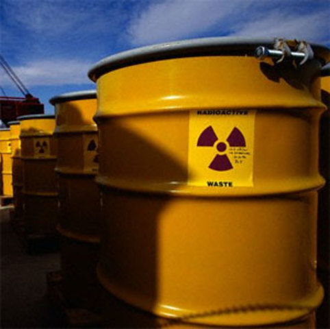 U.S. Nuclear Power Safety One Year After Fukushima