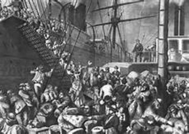 Influx of Immigration