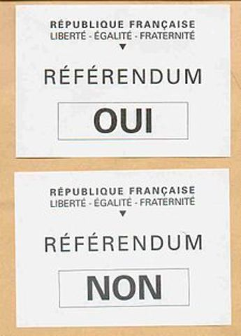 French constitutional referendum