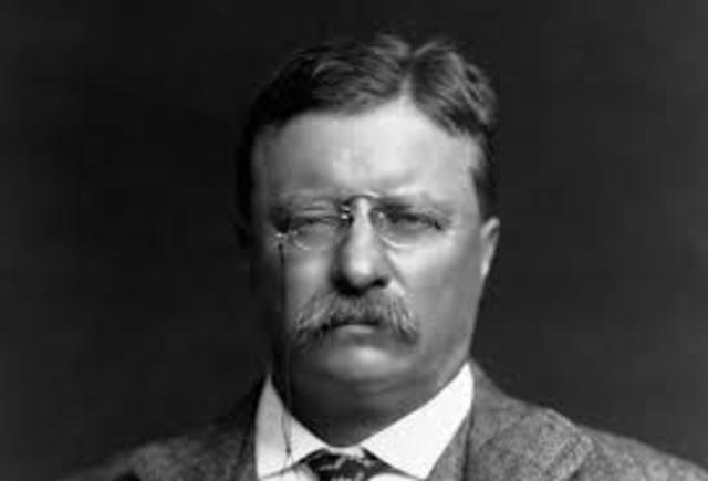 Theodore Roosevelt takes the Presidency