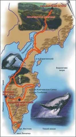 Открытие Камчатки В.Атласовым