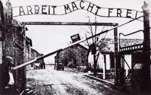 Vladek and Anja are found and sent to Auschwitz