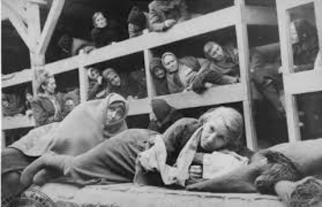 Anja gets moved from Birkenau to Auschwitz
