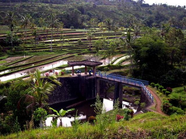 We explore Indonesia