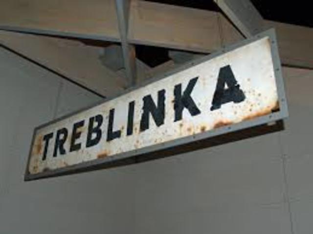 Tour Treblink and Write Essay