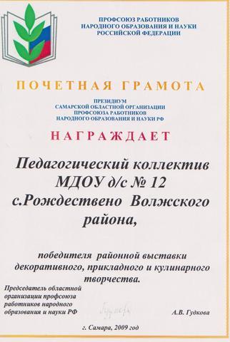 Достижения коллектива 2009