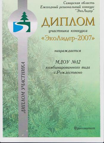 Достижения коллектива 2007г.