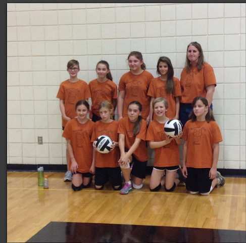 Greenspire Volleyball