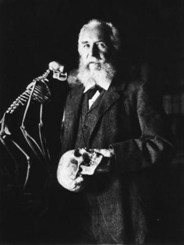 Ernst Haeckel is born