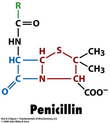 Descubirmiento de la penicilina