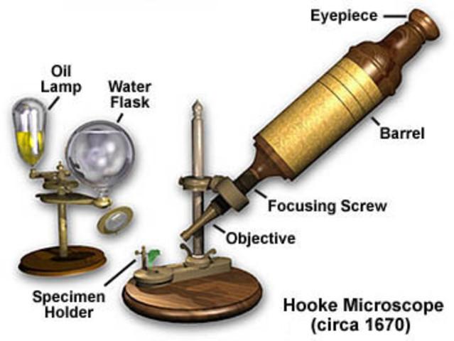 El primer microscopio compuesto
