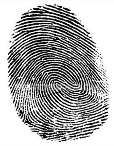 Using Fingerprints to determine Crime