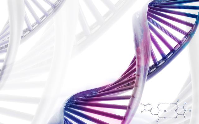 DESARROLLO SECUENCIA DEL ADN. FREDERICK SANGER Y WALTER GILBERT