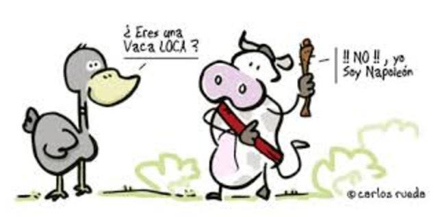"""""""vacas locas"""""""