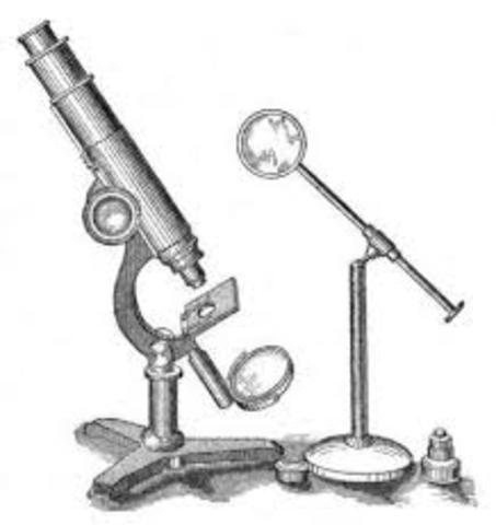 microscopio compuesto.