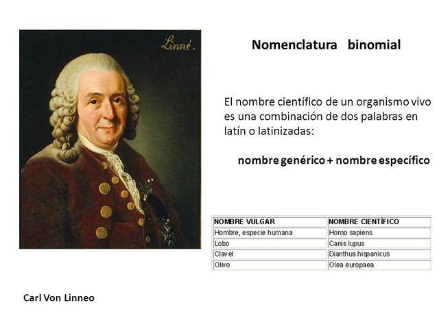 Carolus Linnaeus establecio la nomenclatura para los microorganismos