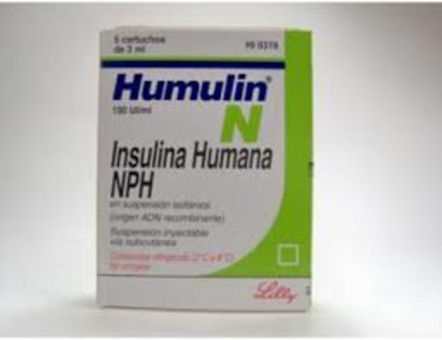 produccion insulina humana