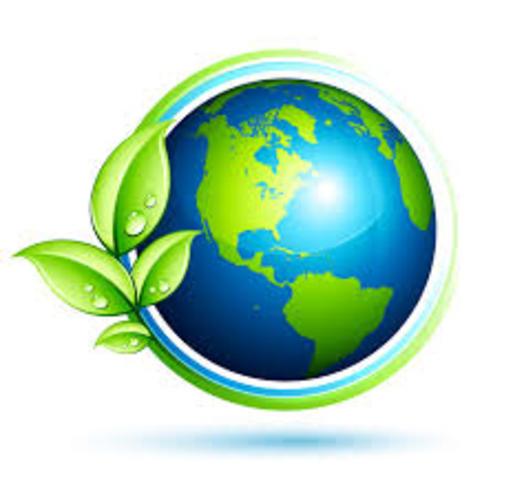 Creacion de la rama de la ecologia