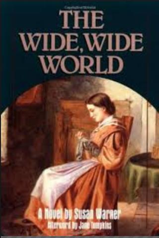 First Domestic Novel