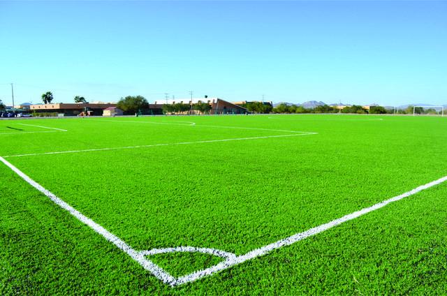 Campo de Fútbol de Pasto Sintético