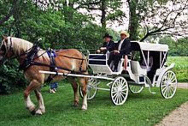 Se invento el carro tirado por caballos en el año (1000)