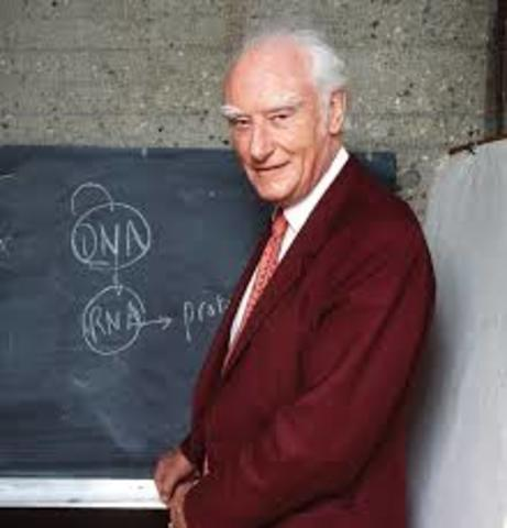 Francis Harry Compton Crick,