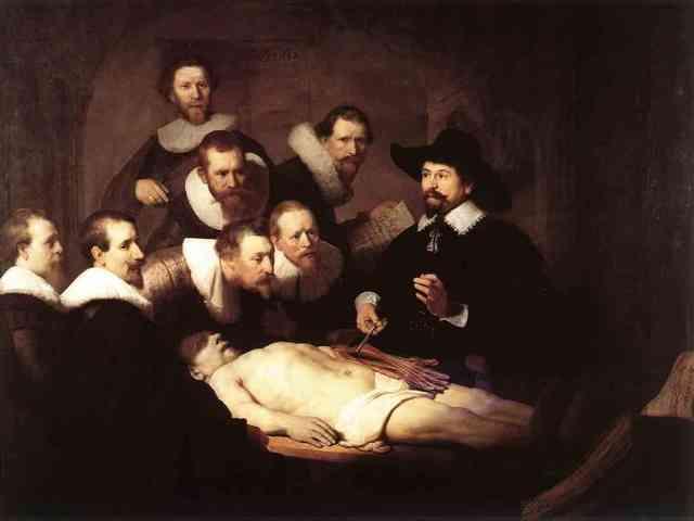 Disecciones de organos.